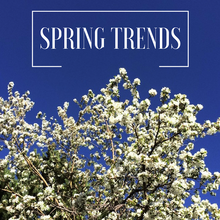 SPRING TRENDS i've been eyeing
